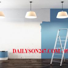 Quy trình sơn dầu cho tường gồm mấy bước ?