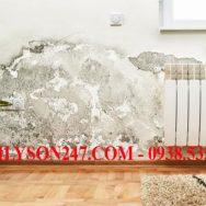 Cách xử lý tường bị thấm nước